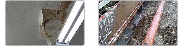 Roof Maintenance & Repair